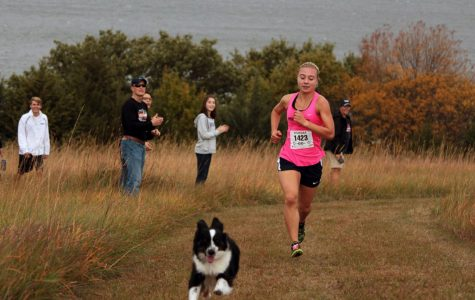 Junior Clara Mayfield rounds the corner at cross country regionals. Mayfield was joined by a loose dog, Della, for a few meters before returning to her owner.