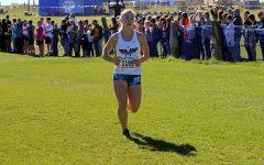 Varsity Cross Country takes on state meet